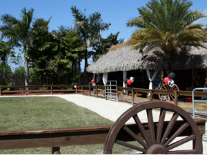 Petting Farm Event Facility And Parties At Tropical Touch Garden Center Near Pembroke Pines