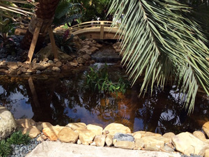 Quality Custom Landscape Design & Installation Services with Warranty!